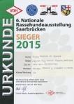 VDH-Saar-Sieger Saarbrücken 2015